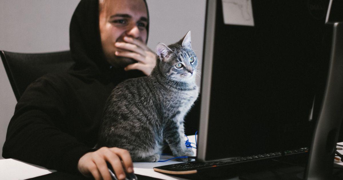 animaux-nos-nouveaux-collaborateurs